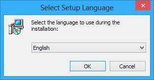 Select setup language window